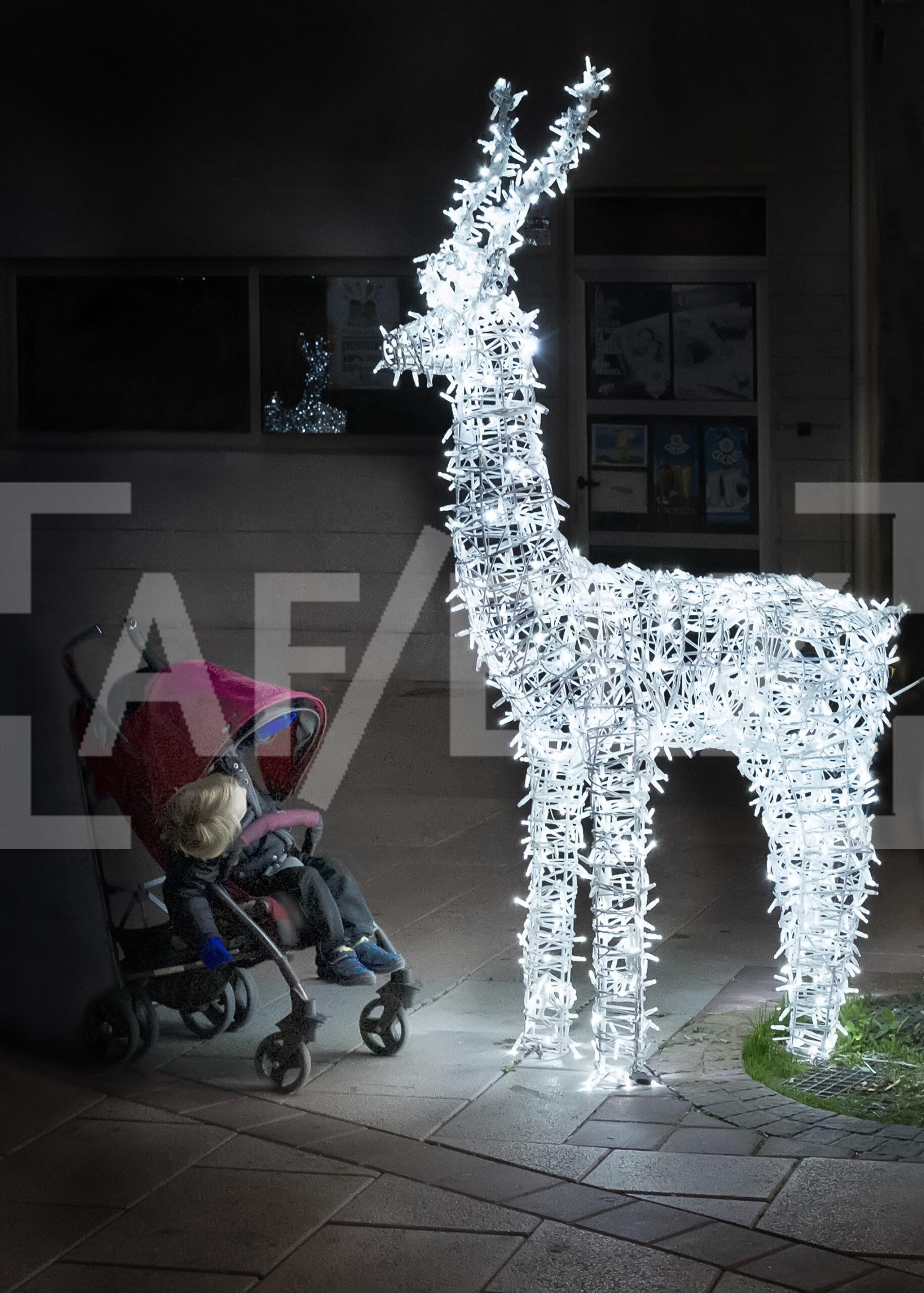 Liguilla – Especial Navidad