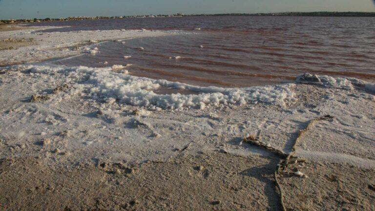 Lagunas de la Mata – Torrevieja